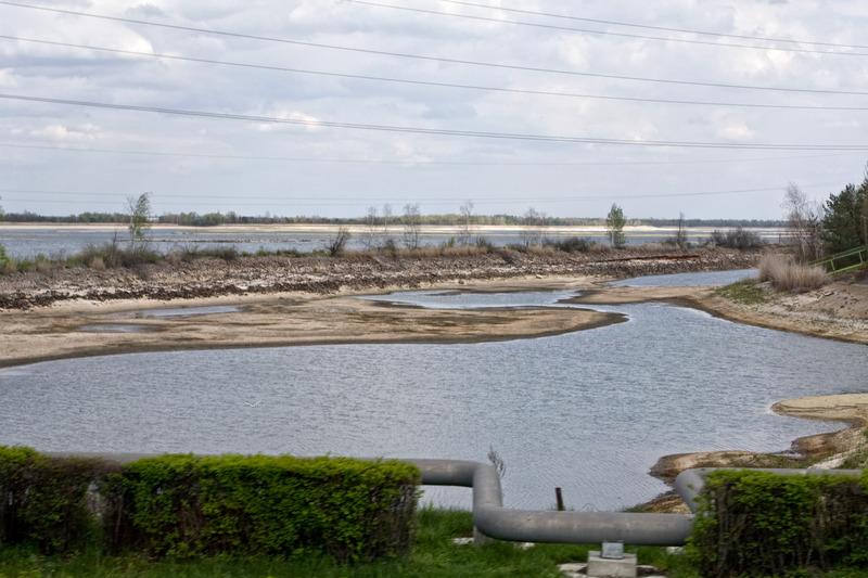 Чорнобиль-30: І під Чорнобильською АЕС буде енергетична верба рости… - фото 26