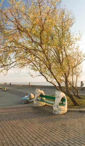 Бердянськ, якого не побачать туристи - фото 11