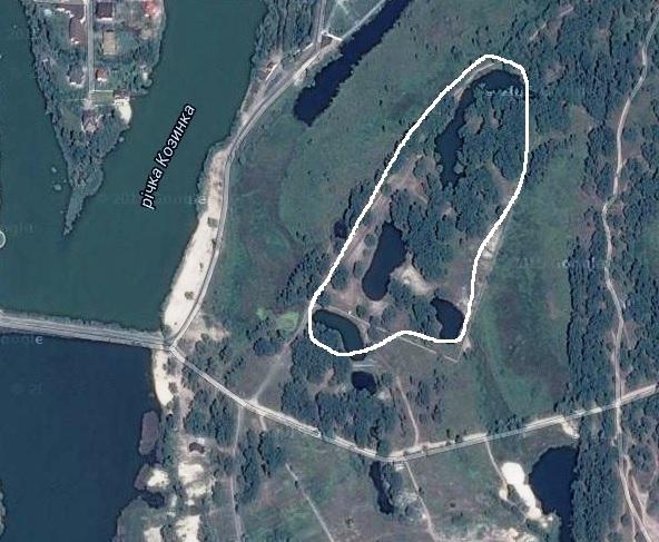 Сестра Олеся Довгого має сім гектарів елітної землі під Києвом - фото 1
