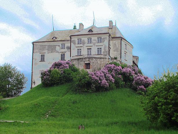 Одразу дві фортеці, що на Хмельниччині увійшли в 9 українських замків-фортець-палаців, які вражають своєю красою - фото 8