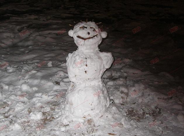 Мешканці Бердянська ліпили зі снігу та бруду різні скульптури  - фото 4