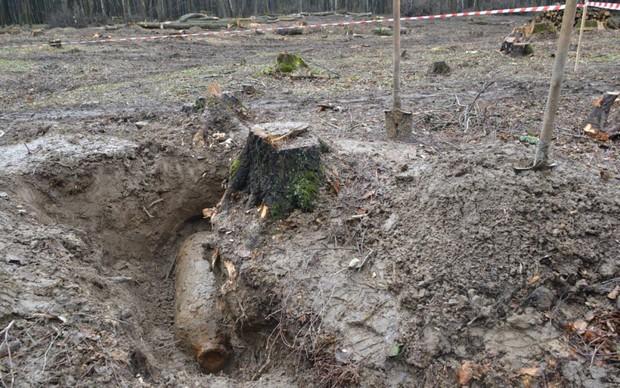 Як поблизу Львова знешкодили діючу авіабомбу - фото 2