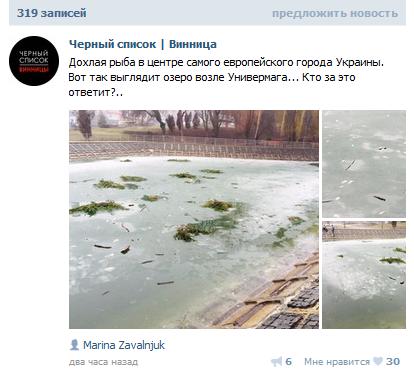 В центрі Вінниці здохла риба - фото 1