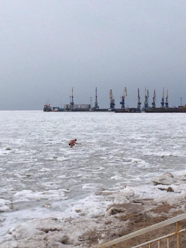 На Бердянській затоці вчора, 21 січня, було помічено справжнього моржа-рибалку - фото 1
