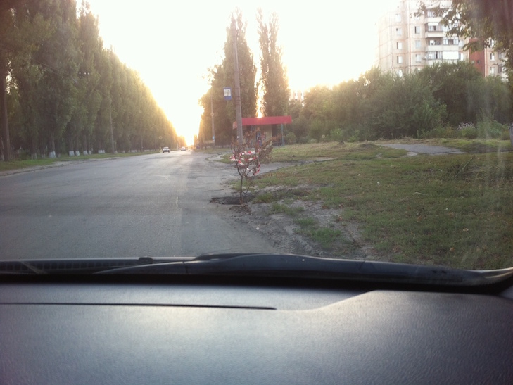 Все для водіїв: Як у Полтаві ікебанами дороги прикрашають - фото 1