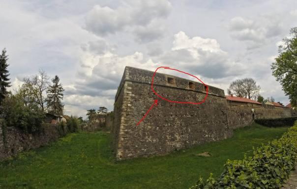 Закарпатці висадять городину на окопах Ужгородського замку (ФОТОФАКТ) - фото 1