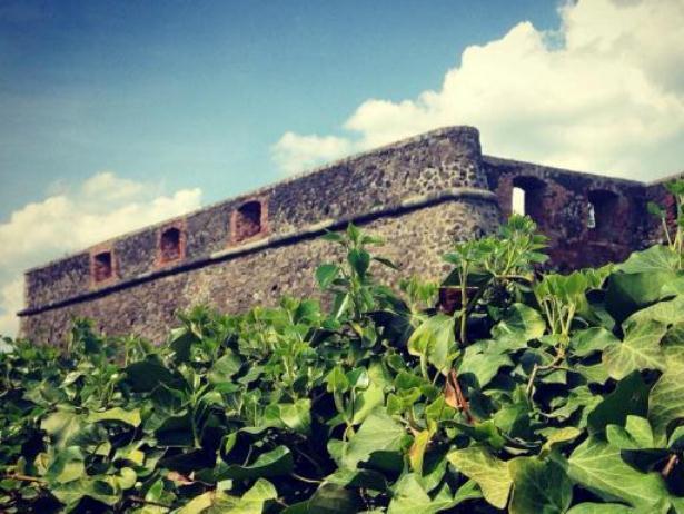 Закарпатці висадять городину на окопах Ужгородського замку (ФОТОФАКТ) - фото 3