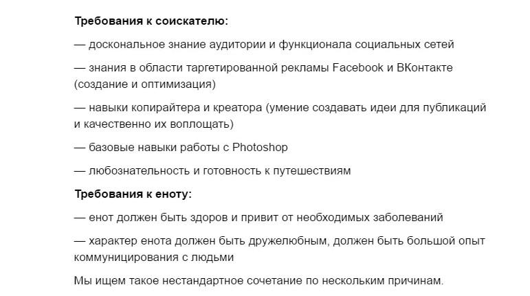 Вакансія для єнота: в Одесі розшукують SMM-менеджера з вихованцем  - фото 2