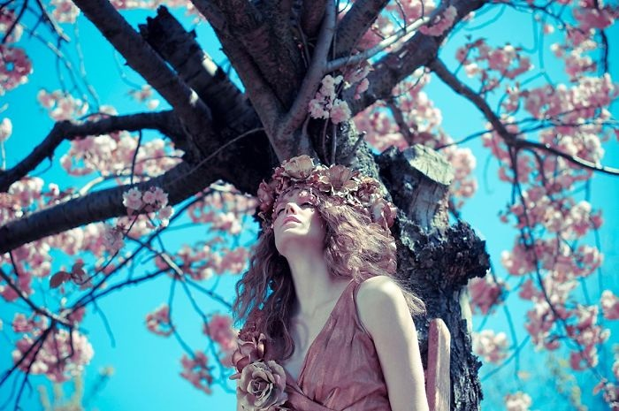Як канадський фотограф робить неймовірні фото завдяки квітучим садкам - фото 1
