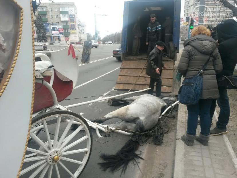 У центрі Маріуполя помер кінь, який віз молодят (ФОТО) - фото 1
