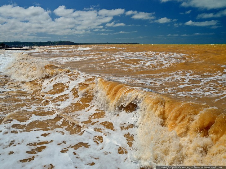 У Криму Чорне море стало жовтим - фото 1