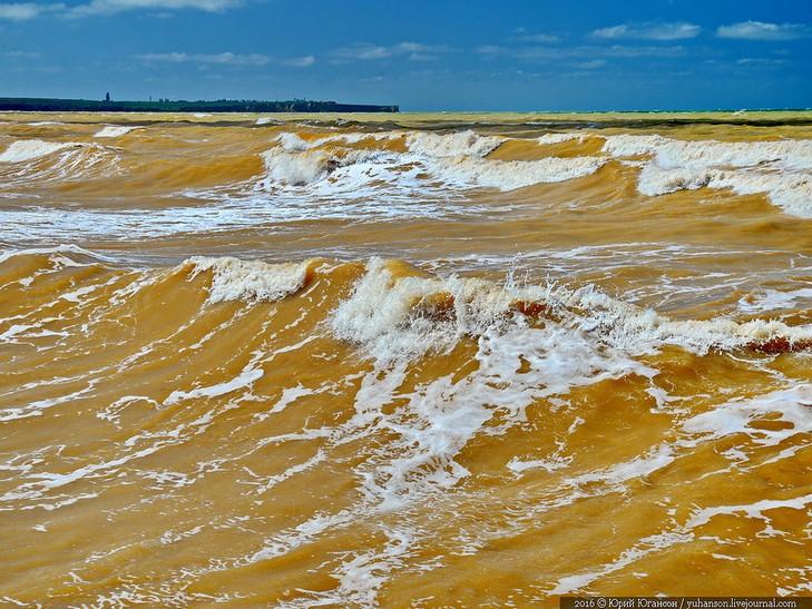 У Криму Чорне море стало жовтим - фото 2