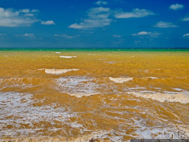У Криму Чорне море стало жовтим - фото 4