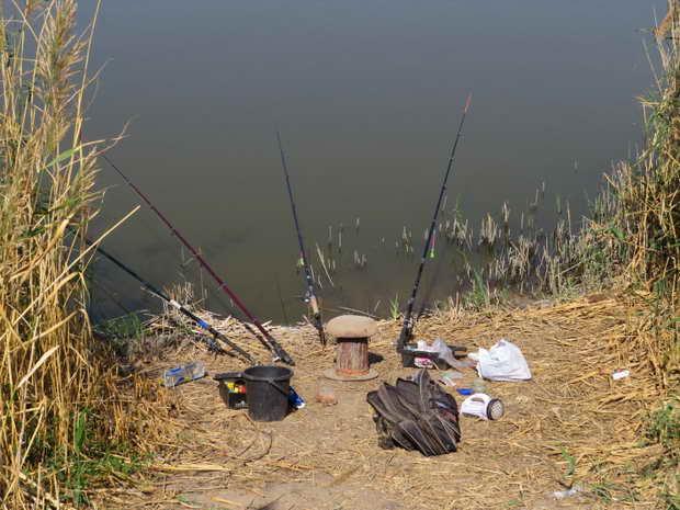 У ставку на Мелітопольщині з невідомих причин розпочався масовий мор риби, проте рибалок це не зупиняє - фото 4