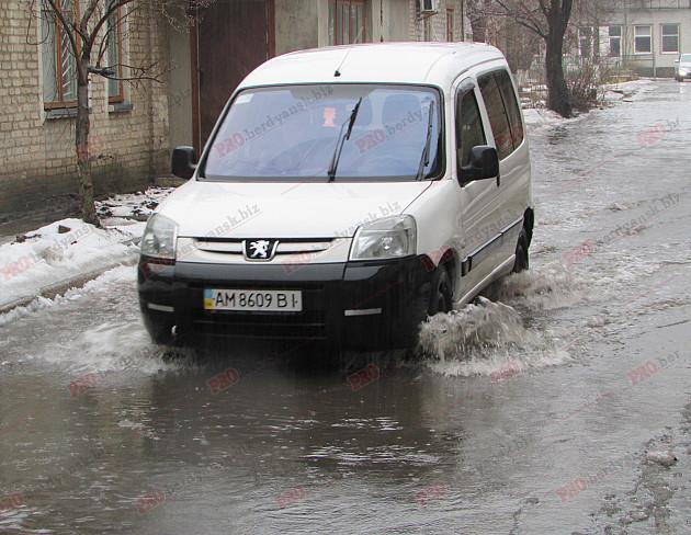 Бердянські комунальники проігнорували прихід зими - фото 4