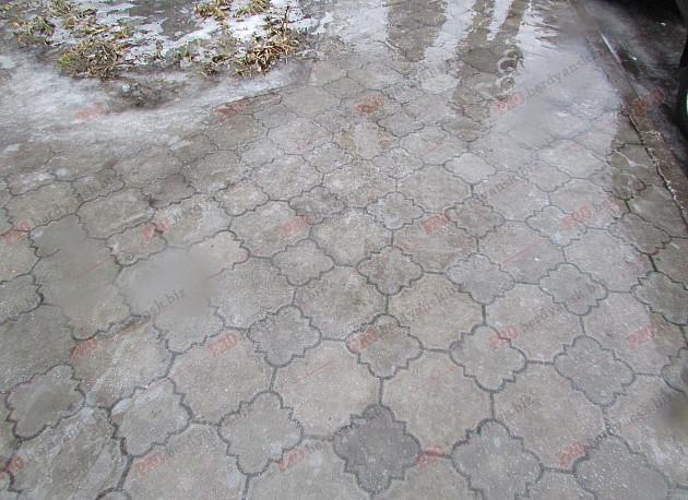 Бердянські комунальники проігнорували прихід зими - фото 7