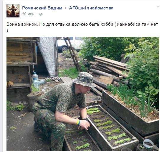 ФОТОФАКТ: Як бійці на Донбасі вирощують собі цибулю - фото 1