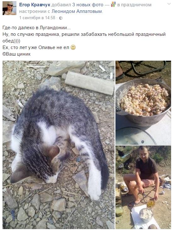 Атошна їжа: який зв'язок між кішкою та салатом олів'є - фото 1