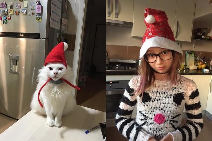 Кілька причин, чому ми завжди любитимемо котиків - фото 3
