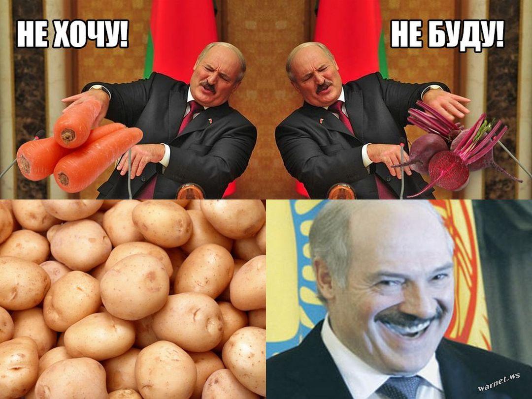 Лукашенко про Пугачову з праски, накладання вето на табу та шахраїв на Росії: 26 цитат - фото 2