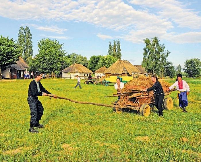 На Волині з'явиться козацька Січ  - фото 1