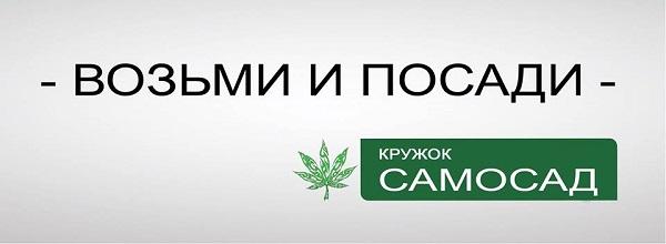 """Політичний стьоб дніпропетровського бійця-блогера """"вибухнув"""" у соцмережах - фото 3"""