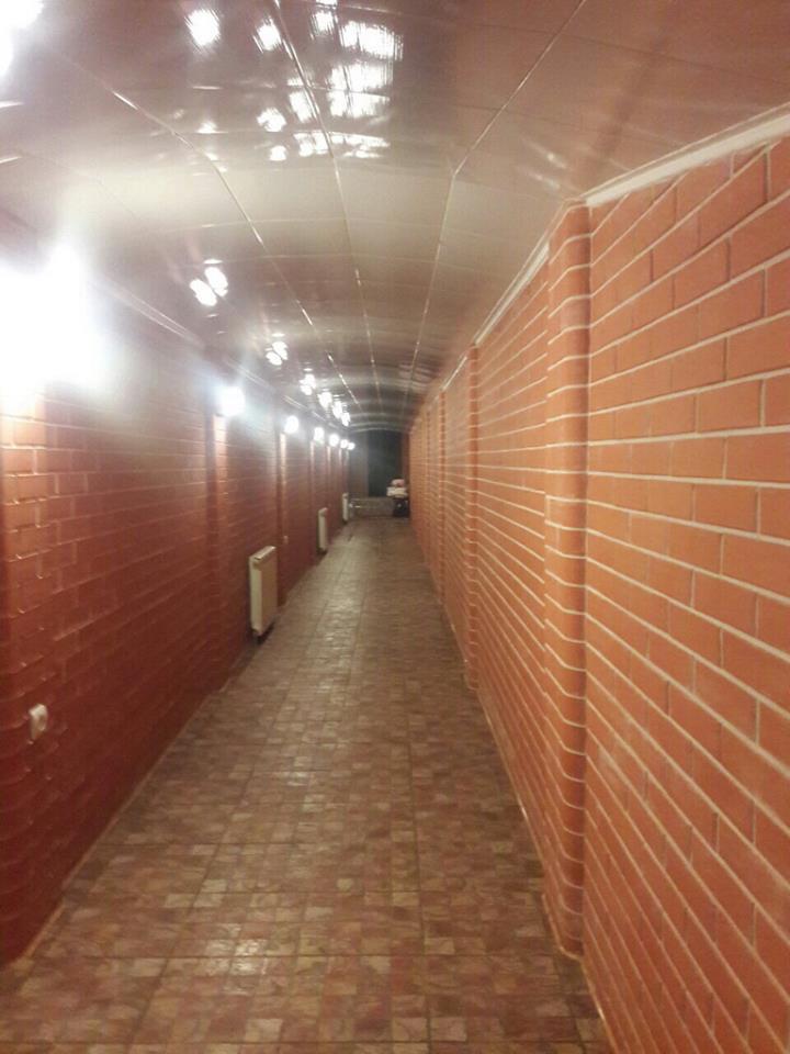 """""""Погорілий"""" чиновник Миколаївської ОДА пояснив, навіщо йому тунелі під будинком"""