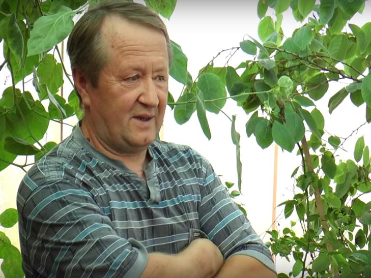 Хмельничанин вирощує 45 сортів цитрусових - фото 3
