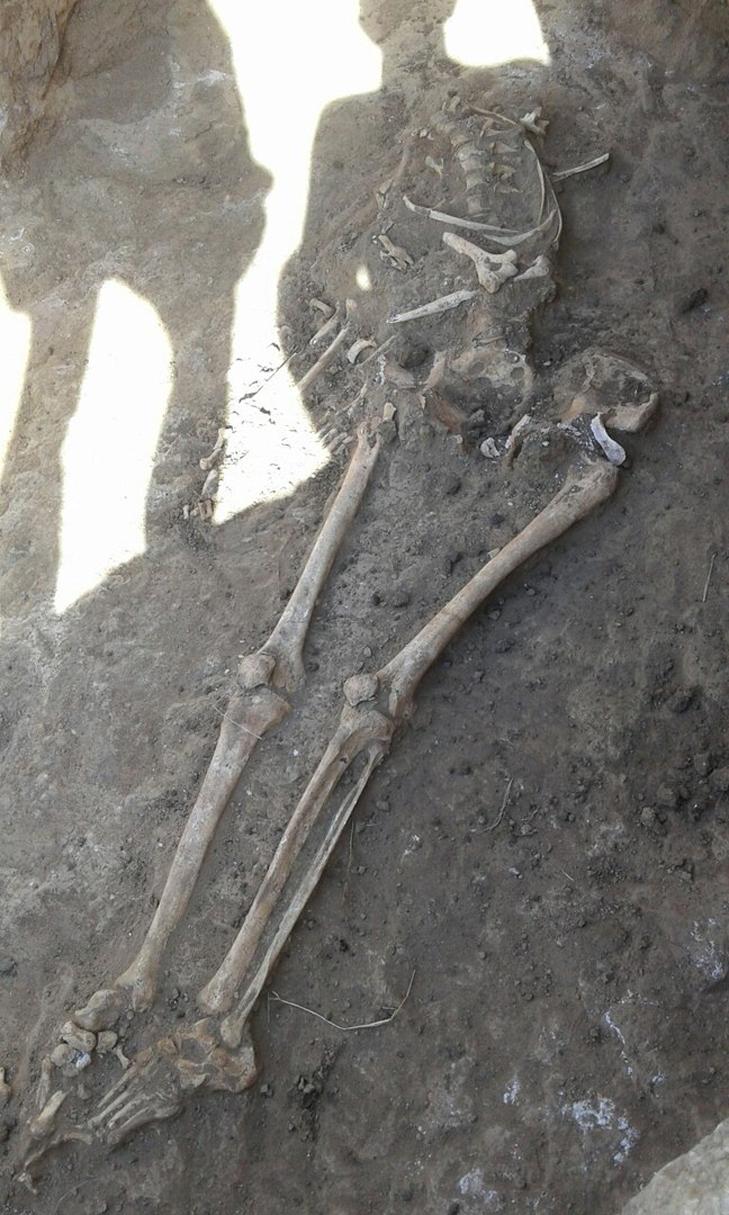 Під Мелітополем знайшли древні людські останки - фото 1