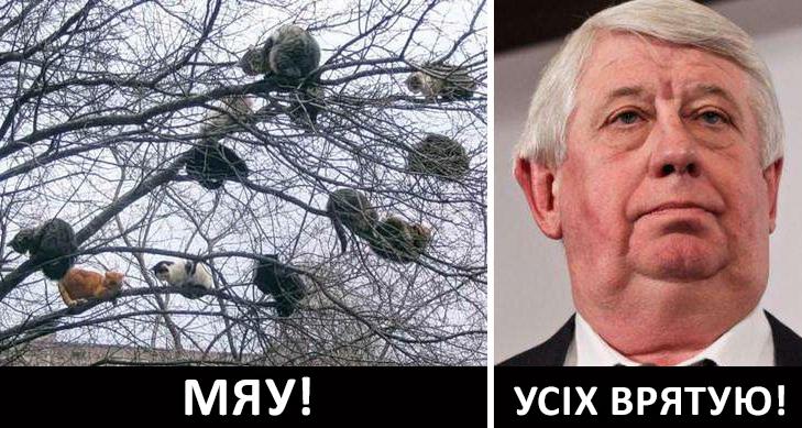 Активы беглых украинских политиков в ЕС не разморожены, но есть аспект доверия к нам европейских экспертов, - Касько - Цензор.НЕТ 5923