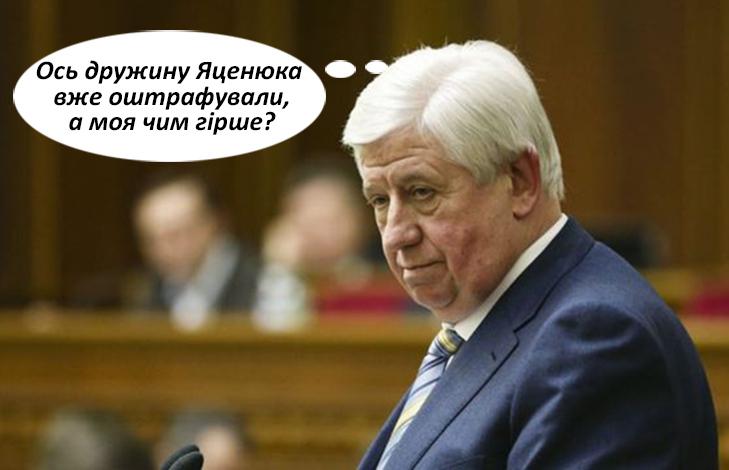За шо ще можуть оштрафувати Терезу Яценюк (ФОТОЖАБИ) - фото 6