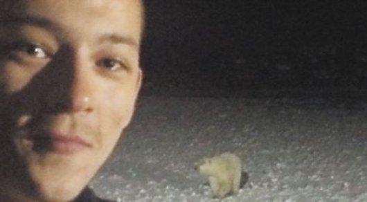 Як виглядає ймовірний вбивця білої ведмедиці - фото 2