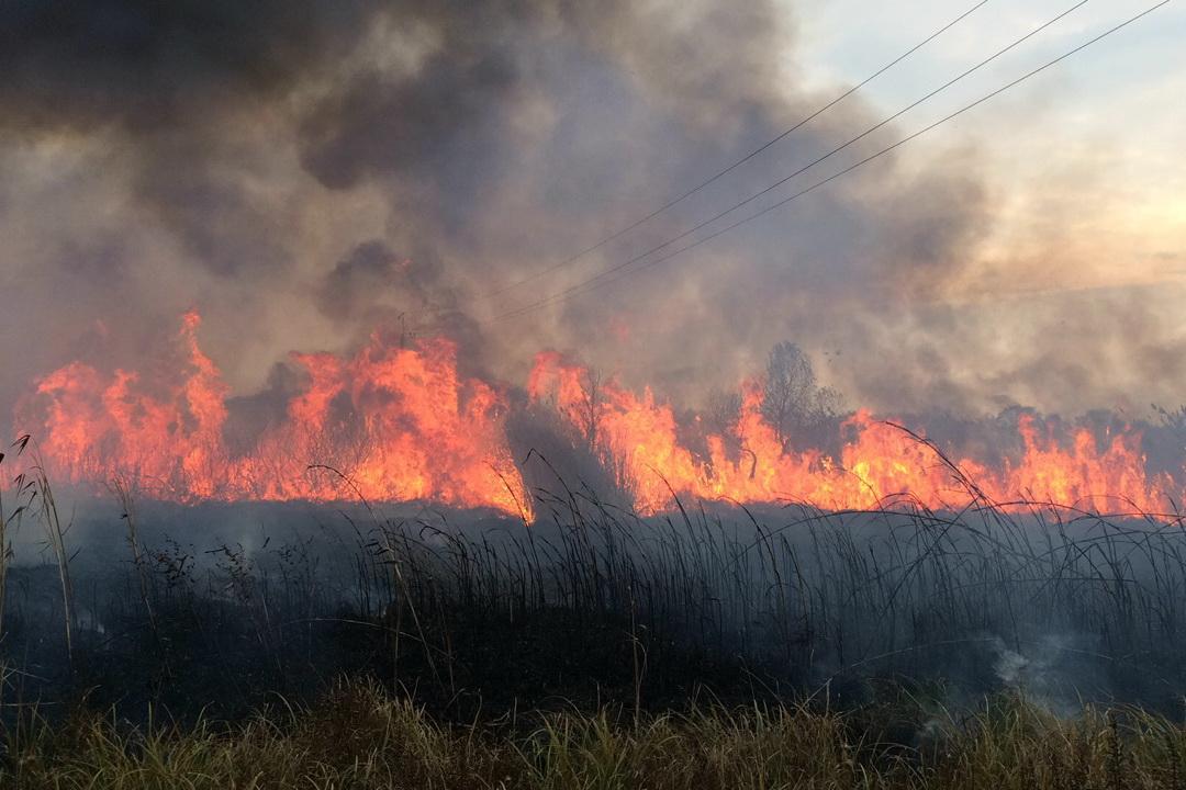 На Харківщині гасили десяток пожеж - фото 1