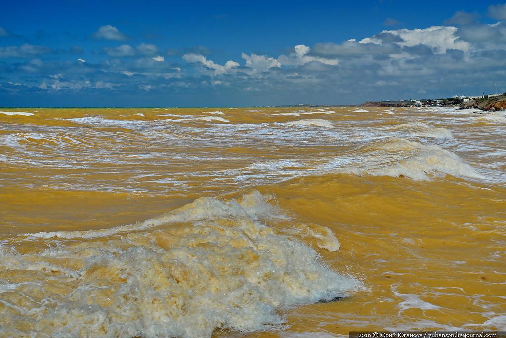 Як у Криму Чорне море стало жовтим - фото 5