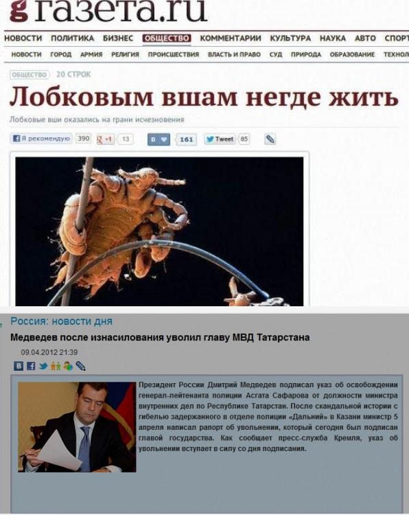 Найкумедніші заголовки у ЗМІ - фото 1