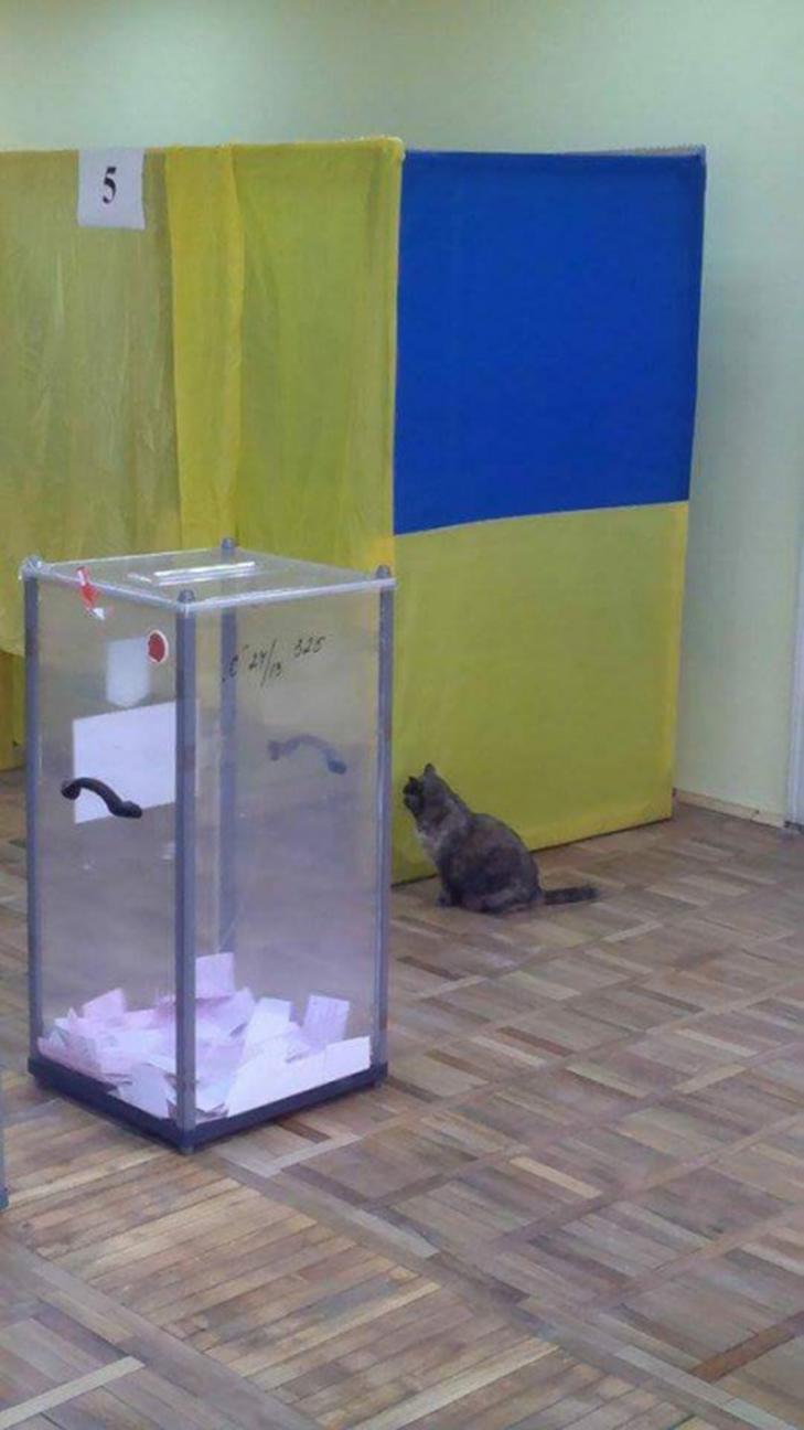 як проходив другий тур виборів у ФОТО - фото 1