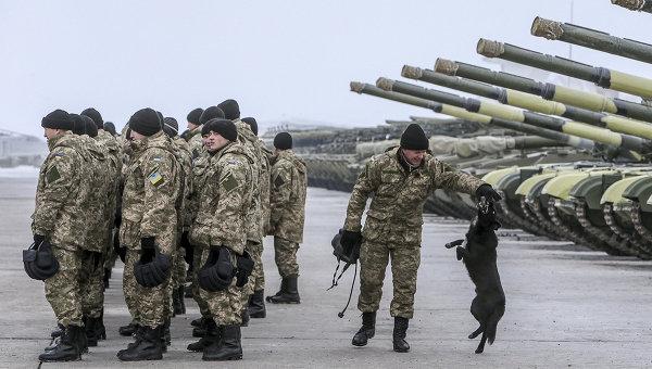 Чим займаються на Донбасі найкращі друзі бійців АТО - 6 - фото 6