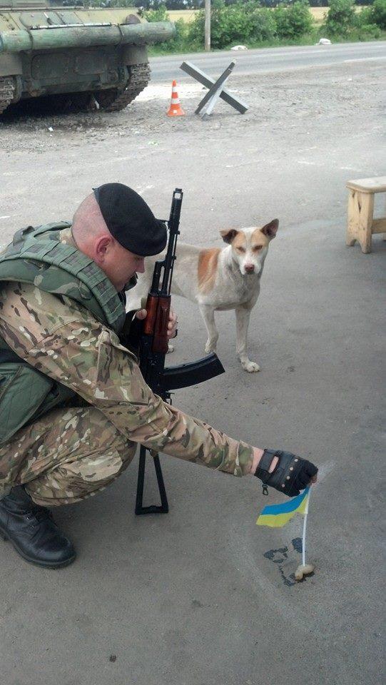 Чим займаються на Донбасі найкращі друзі бійців АТО - 6 - фото 2