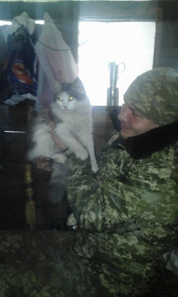 За що котам в АТО треба поставити пам'ятник-4 - фото 24