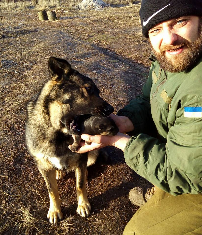 За що собакам в АТО треба поставити пам'ятник - фото 17