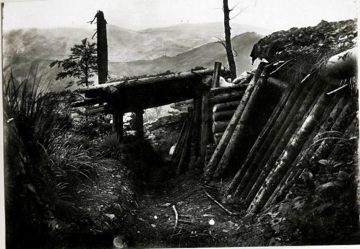 Як Перша Світова Війна назавжди розправила крила свободи нашій нації - фото 10