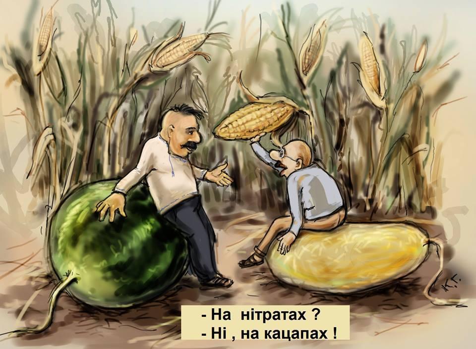 Гриб-рекордсмен вагою майже 18 кілограмів знайшли на Київщині - Цензор.НЕТ 2322