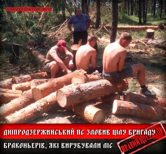 "ТОП-5 дутих заслуг ""Правого сектору"" - фото 3"