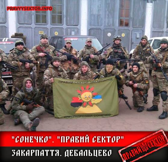 "ТОП-5 дутих заслуг ""Правого сектору"" - фото 5"