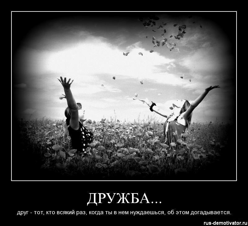 День дружби: 20 картинок і софізмів про найважливіше - фото 15