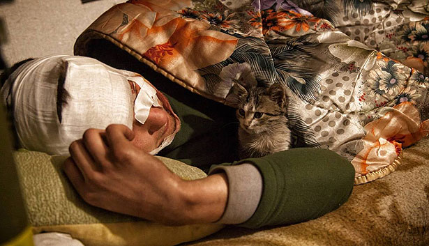 Душевні фото. Коти-укропи на війні (ФОТО) - фото 4