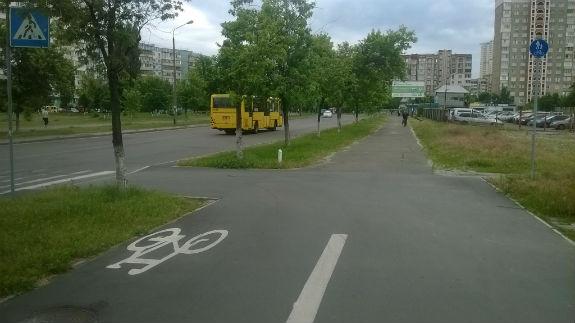 Увесь шик і блиск велодоріжки Кличка зліз за 9 місяців - фото 6