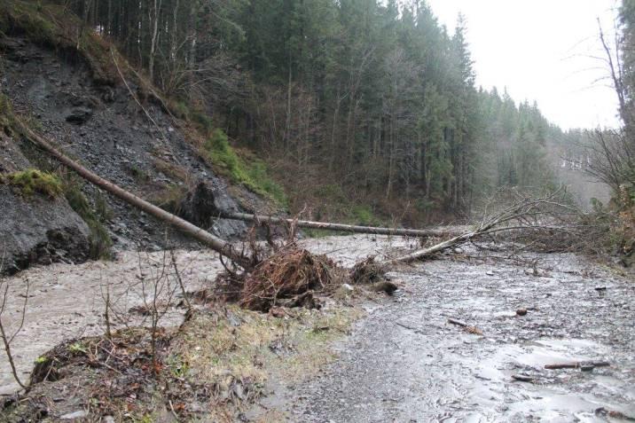 На Закарпатті селеві потоки зруйнували дорогу на Драгобрат - фото 1