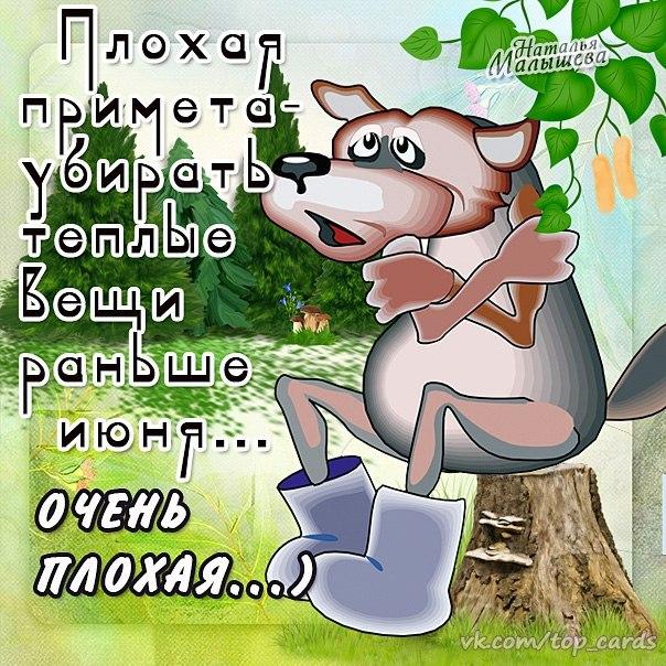 В Україні скасували літо (ФОТОЖАБИ) - фото 5