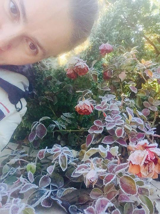 Королевська та мертві троянди - фото 1